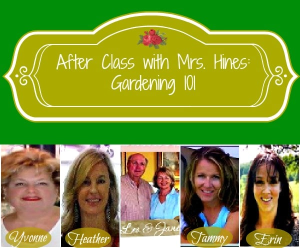 Find Everything You Need to Know to Start a Garden at www.mrshinesclass.com