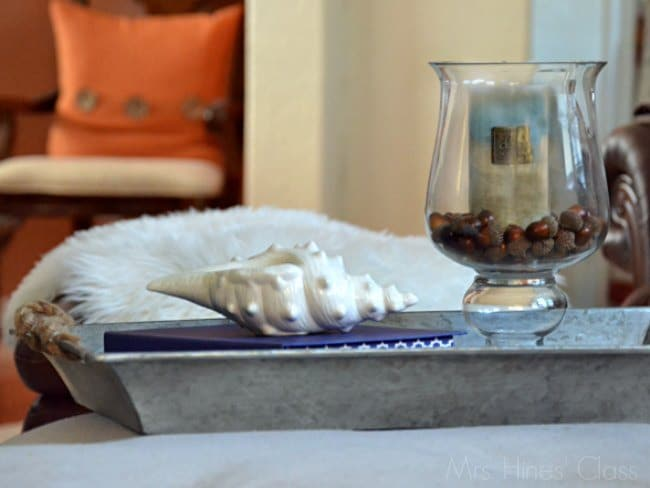 7 Pretty and Practical Ways to Use Trays in Home Decor / www.mrshinesclass.com