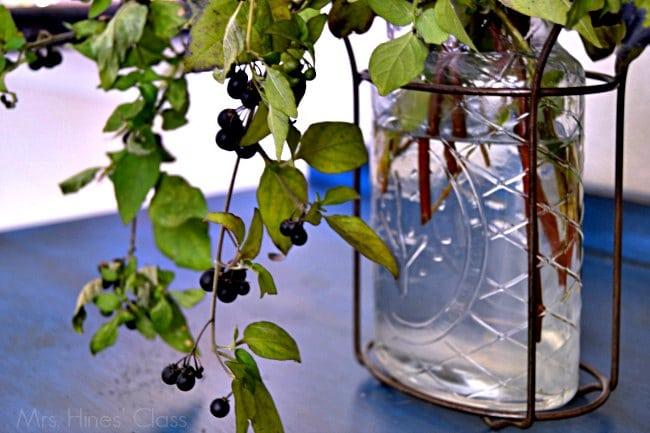 diy floral arrangements  / wild berries /  www.mrshinesclass.com
