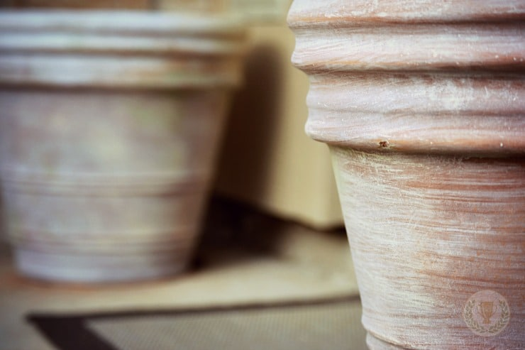 The Transformation of Terra Cotta Pots and Me